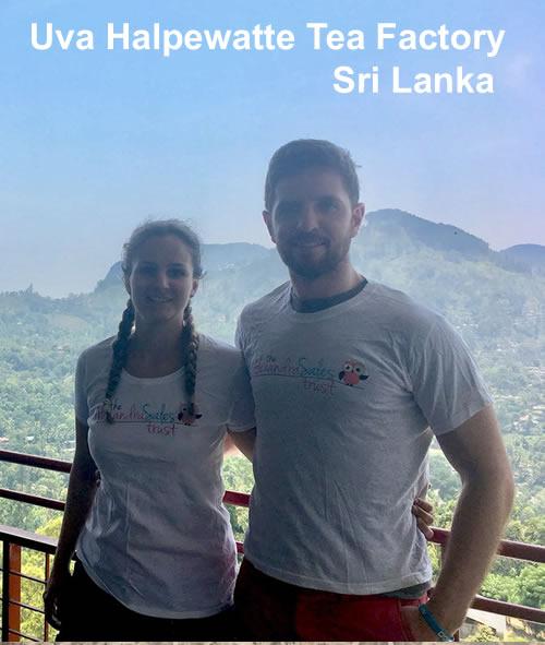 Uva Halpewatte Tea factory Sri Lanka